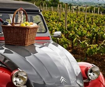 Visite privée du vignoble de Saint-Emilion 7H30
