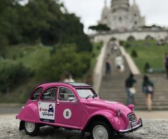 2CV Miniature Rose - Antoinette