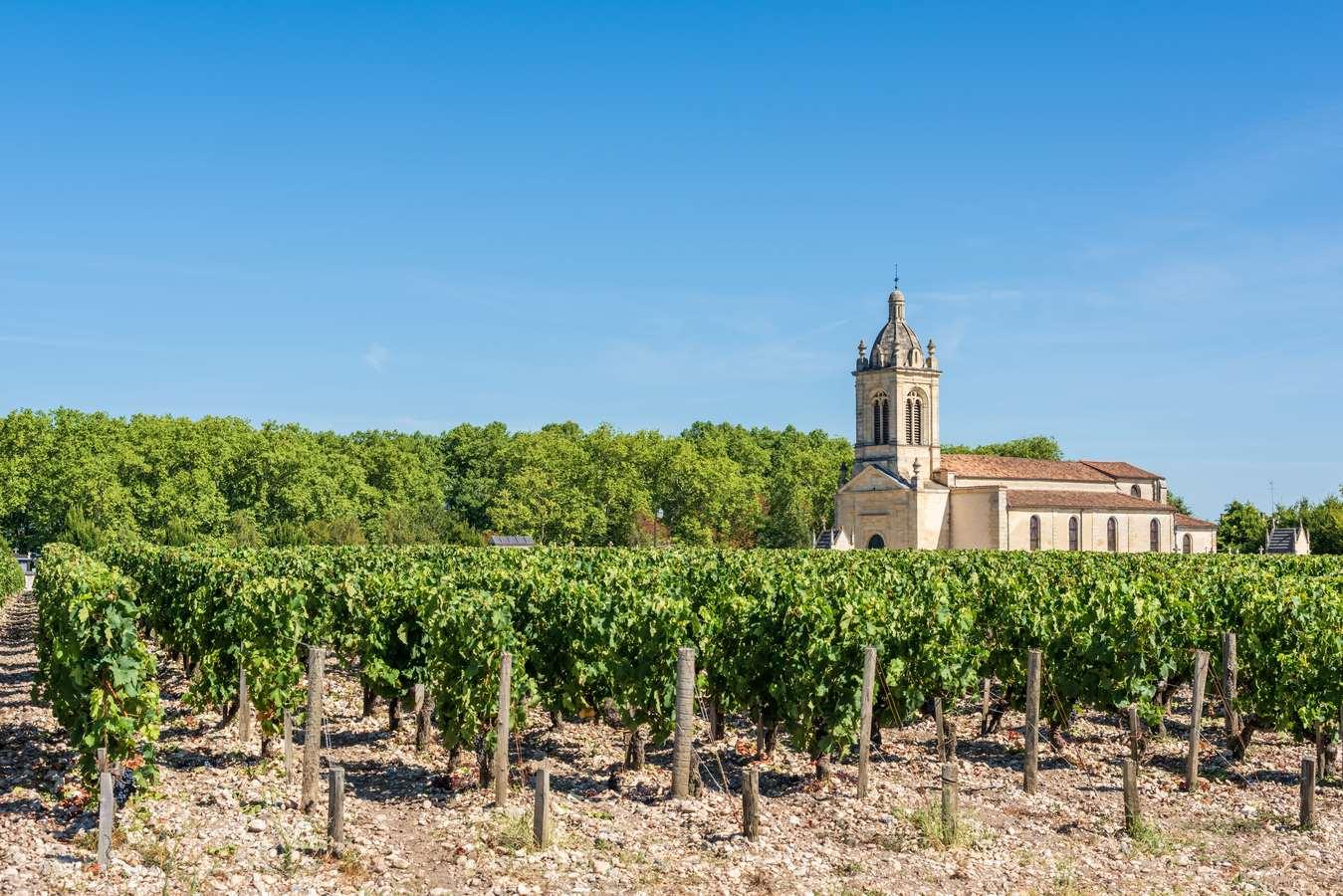 Wine Tour Médoc en 2CV